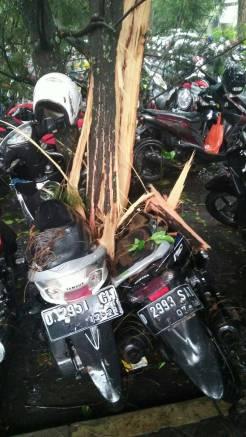 Hujan Es di Bandung 3