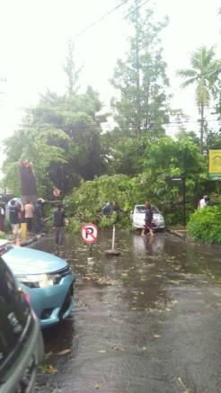 Hujan Es di Bandung 4